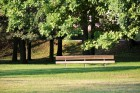 Autumn afternoon sunny park with wooden bench